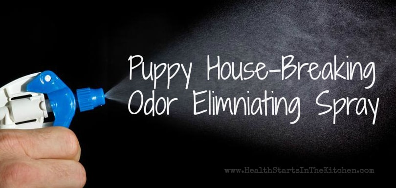 Puppy House-Breaking, Odor Eliminating Spray
