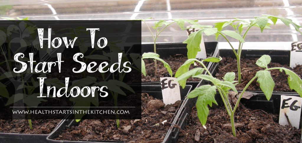 how to start seeds indoors-01