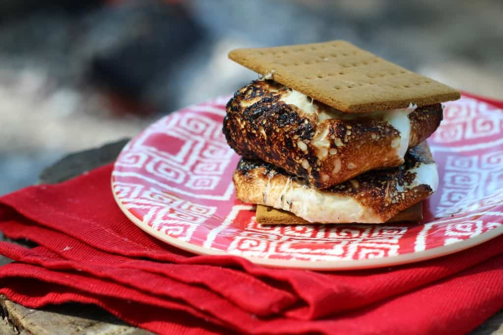 Wold Famous Healthy Homemade S'mores