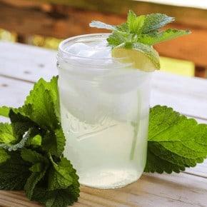 The Easiest way to use fresh lemon balm; Lemon Balm Iced Tea