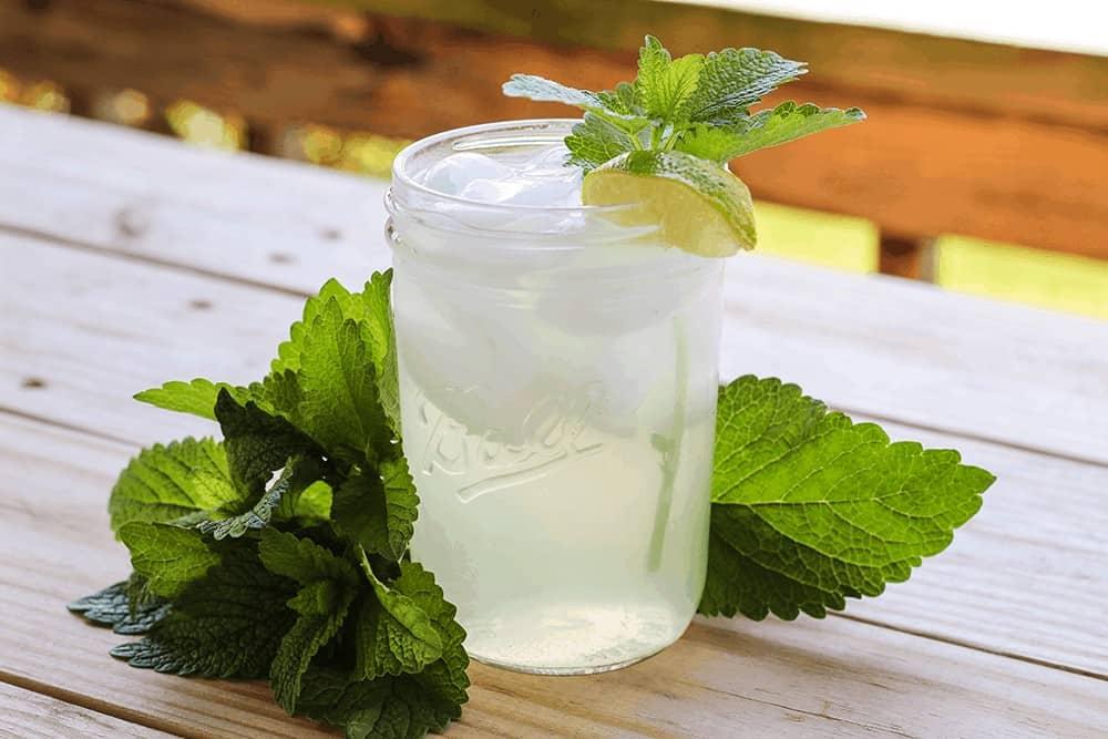 glass of cool & refreshing homemade lemon balm iced tea