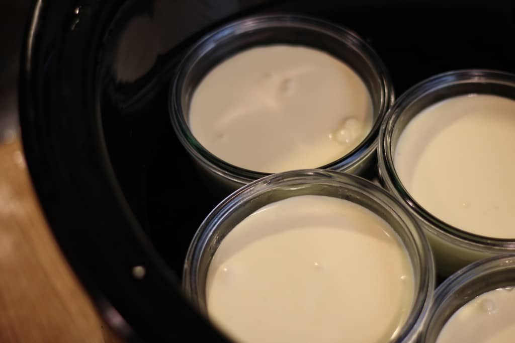 Crockpot Cheesecake in a Jar and Mighty Nest Giveaway - Health Starts in the Kitchen - Real Food, Primal, Low Carb