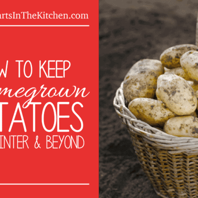 How to keep homegrown potatoes for winter and beyond