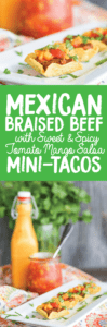 Mini Mexican Braised Beef Tacos
