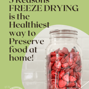 5 Reasons FREEZE DRYING is the Healthiest way to Preserve food at home!