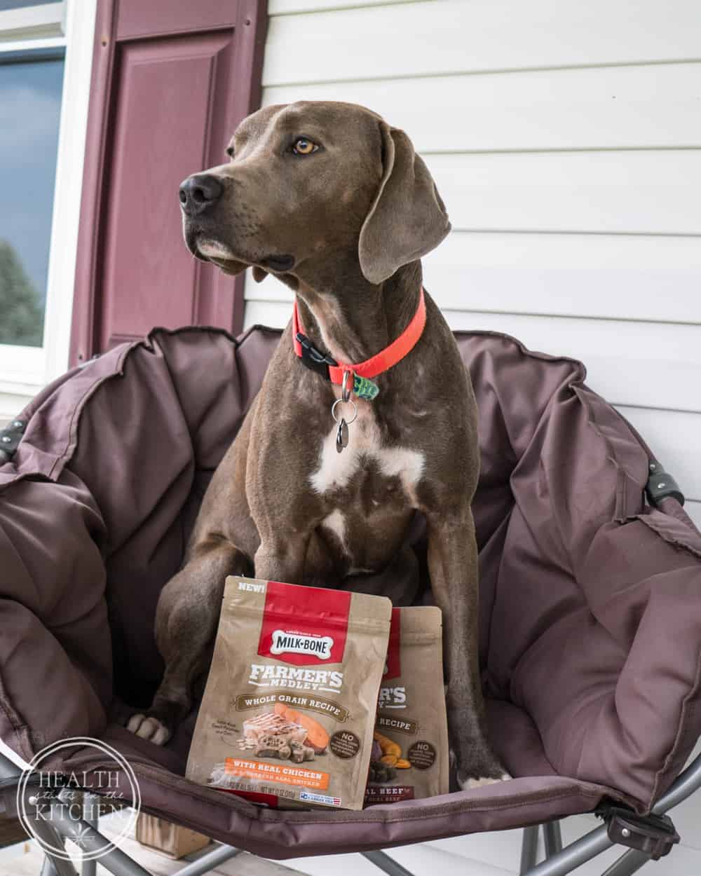 Pampering your Pooch with Milk-Bone Farmer's Medley Dog Treats