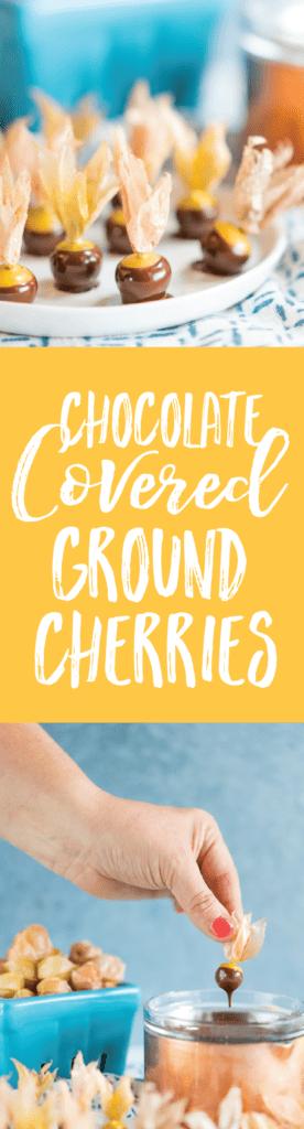 Dark Chocolate Covered Ground Cherries