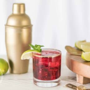 Healthier Happy Hour Sparkling Cranberry Cocktail