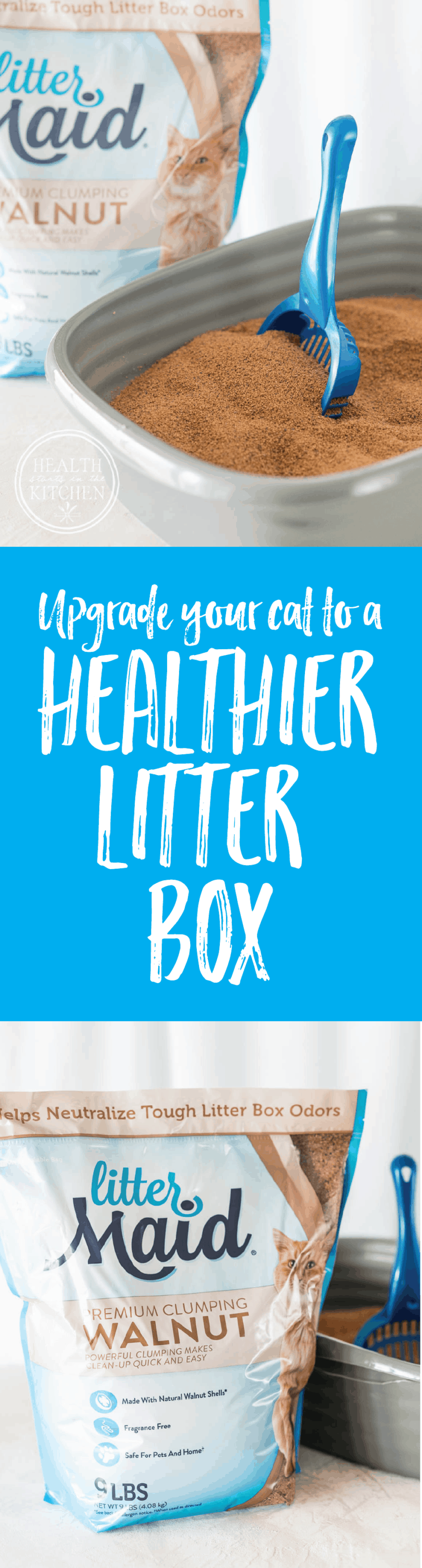 How to Upgrade to a Healthier Litter Box, even if your cat is old and picky!