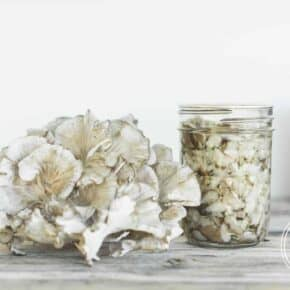 How to Can Maitake Hen of the Woods Mushrooms {Grifola Frondosa}