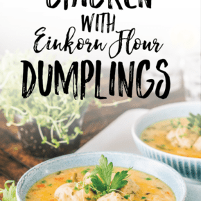 Creamed Chicken and Dumplings made with Einkorn Flour
