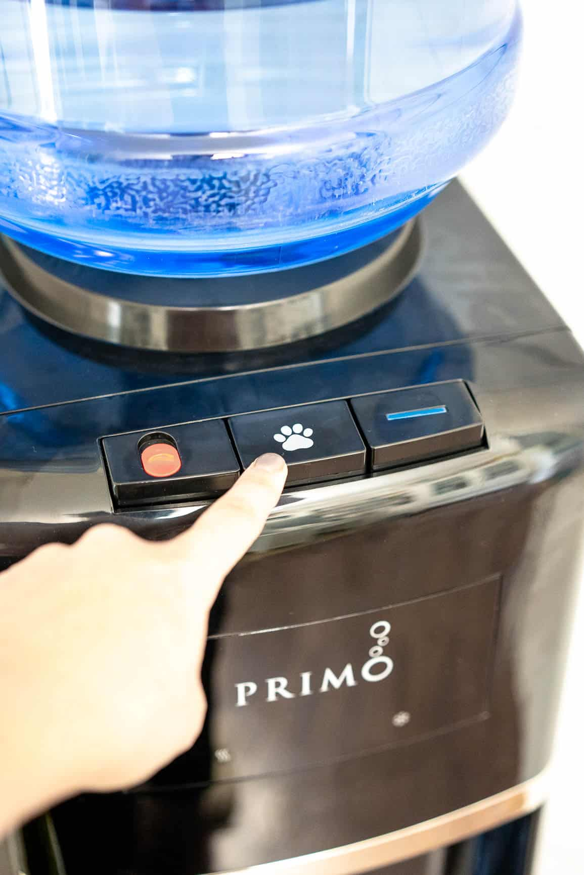 Are you giving your fur-baby healthy drinking water?? Learn how to get the Healthiest Drinking Water for Dogs with PRIMO WATER AD