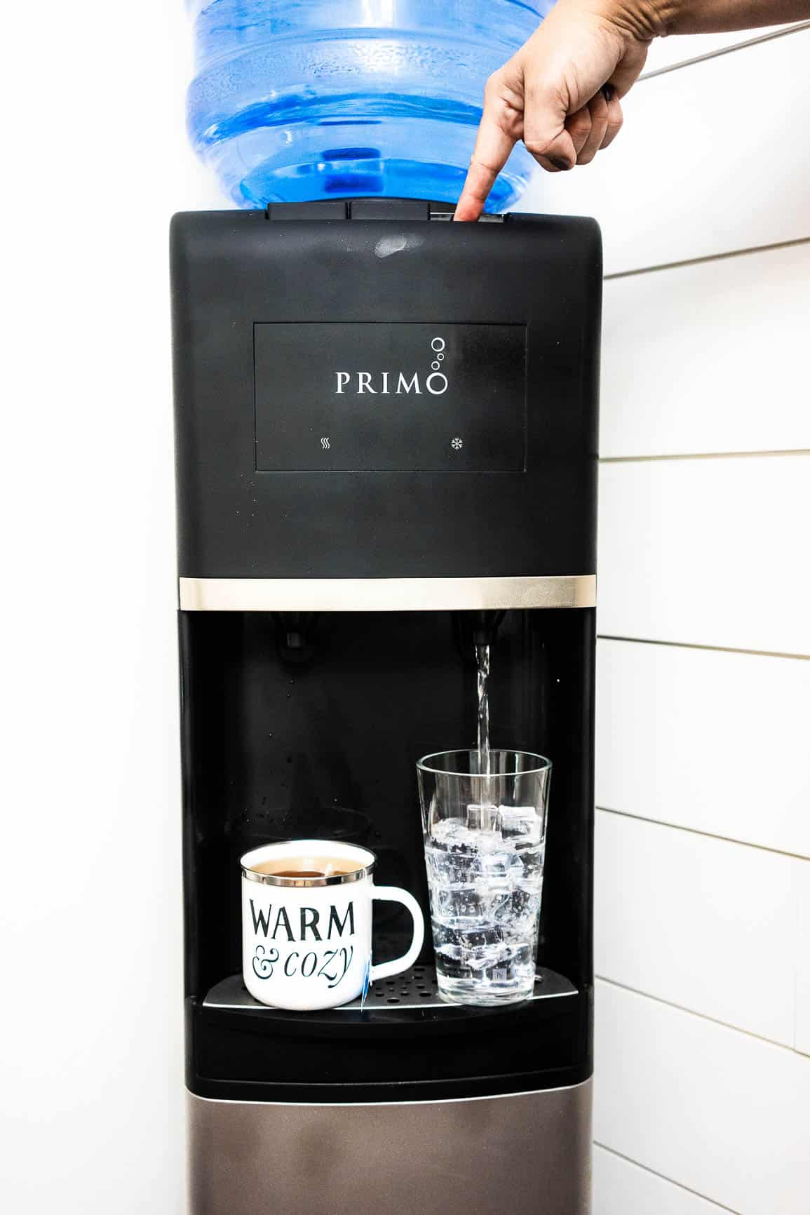 Healthiest Drinking Water for Dogs with PRIMO WATER