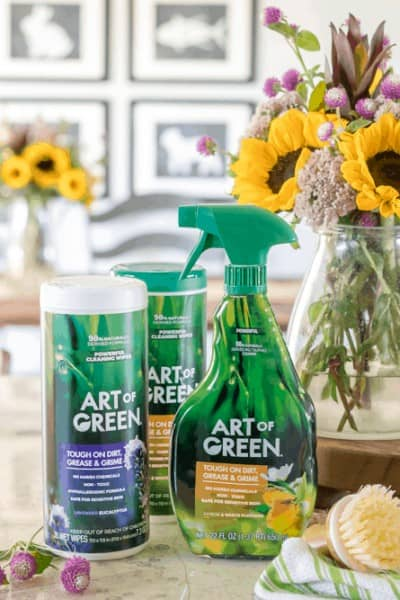 The Easiest way to Keep your Home Green and Clean with Art of Green